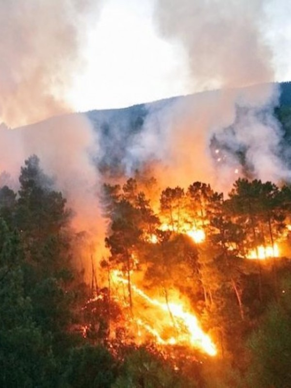 En Soria todo está a punto para afrontar la campaña de incendios