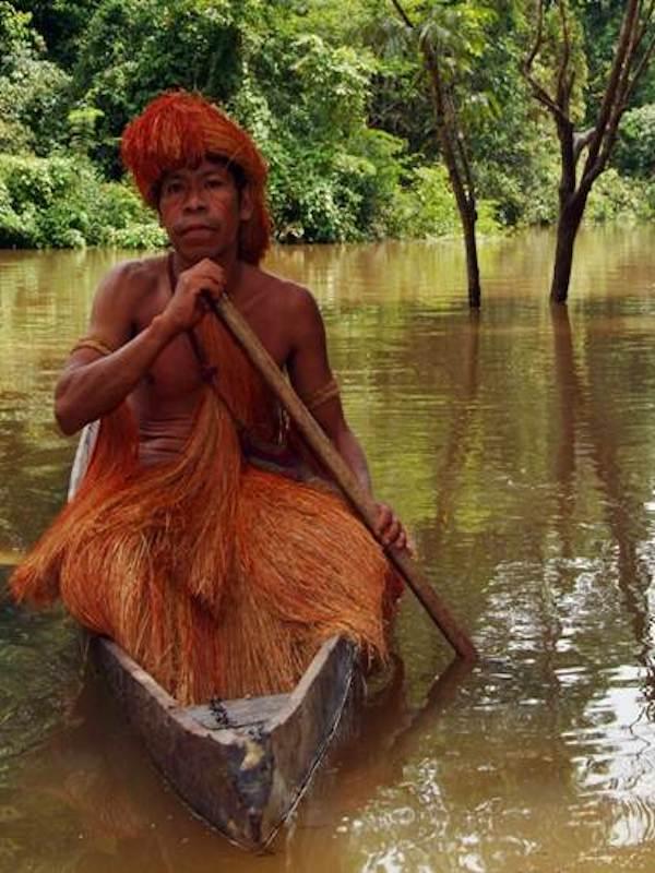Los indígenas tsimane de la Amazonia boliviana tienen el 'secreto' de la juventud cerebral