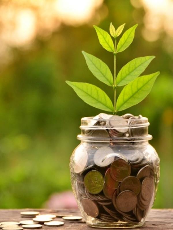Kutxabank con la 'sostenibilidad'