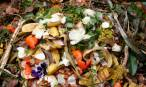 No más 'cultura' del desperdicio alimentario