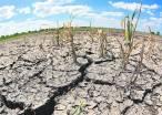 Caídas del PIB por el cambio climático