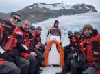 Antártida: menos hielo, más fitoplancton