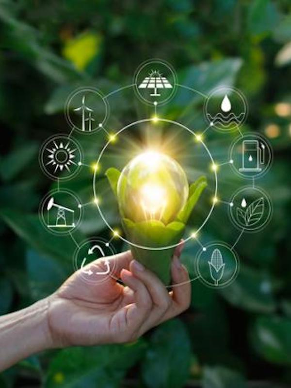 Consulta aquí las subvenciones para empleos verdes