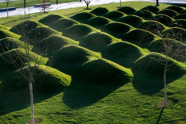 El Ayuntamiento de Huesca retoma los paseos guiados a los espacios verdes