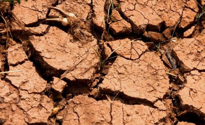 Narbona exige al Ejecutivo que se ocupe del cambio climático en España