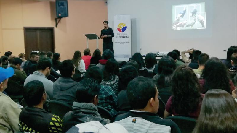 Ecuador: Monitoreo del cóndor andino se prepara en el sur del país