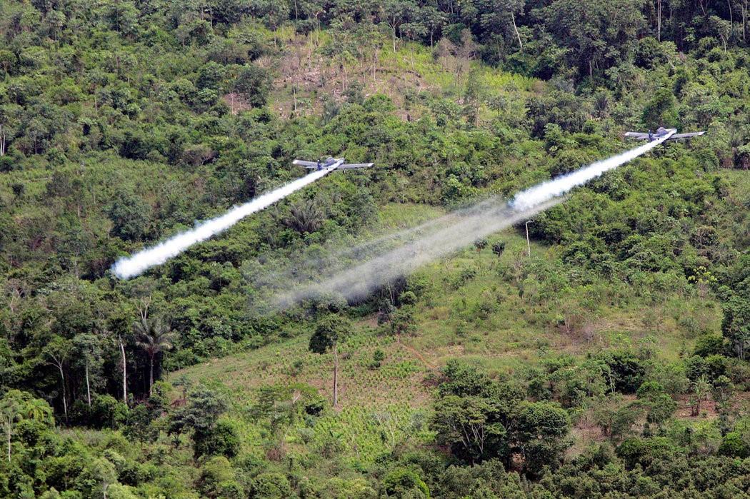 Los ilícitos cultivos de coca en Colombia se pulverizan con Glifosato