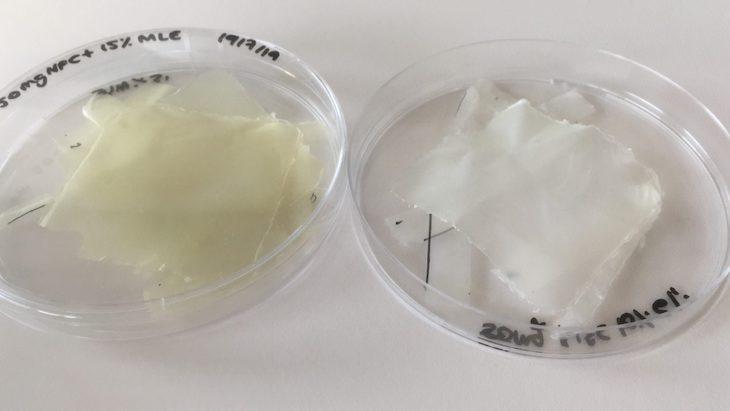 Innovador bioplástico para conservar alimentos