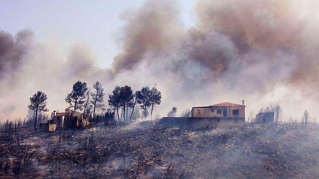 Limpiar y desbrozar el monte quemado en Valencia 'solo' habría costado 4 millones de euros