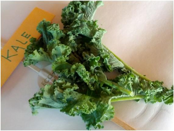 Kale: beneficios y consejos útiles de la col rizada