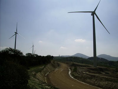 Los 12 parques eólicos de la provincia cuentan con una potencia total de 384 megavatios
