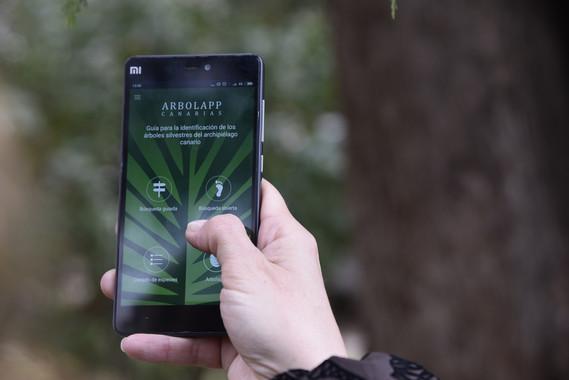 Nace Arbolapp Canarias, una app gratuita para identificar los árboles de las islas