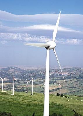 Gobierno canario espera que las primas a las renovables en el archipiélago sirva para que despegue las energías eólicas