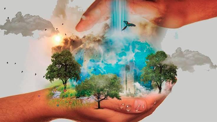 Master destacado en Gestión del Medio Ambiente: sostenibilidad, sistemas e impacto ambiental