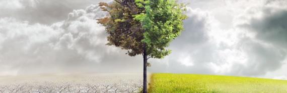 Propuestas para una Ley de Cambio Climático