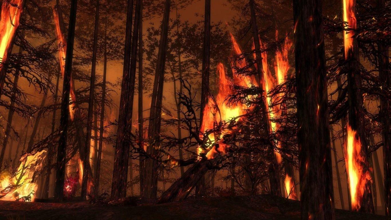 Los montes de España podrían seguir ardiendo