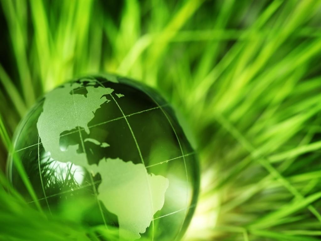Tecnologías verdes para un futuro mejor