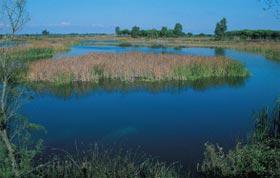 Medio Ambiente  elabora la primera base de datos sobre obras artísticas asociadas al agua y los ríos