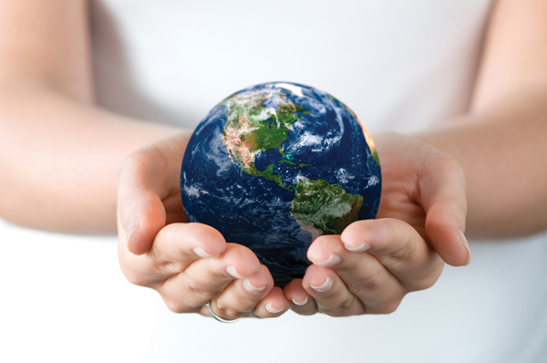 IMF: Master en Gestión del Medio Ambiente: sostenibilidad, sistemas e impacto ambiental