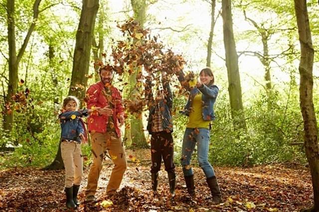 Los secretos para un otoño repleto de salud