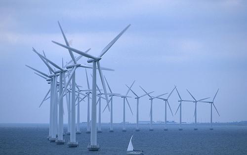 Los parques eólicos marinos requieren una estricta planificación y evaluación de impacto ambiental
