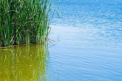 Manejo sostenible del lago Bosumtwi, en Ghana
