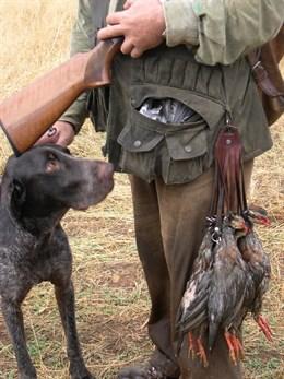 El Congreso debate el martes una ley del PP para permitir la caza y pesca de especies invasoras