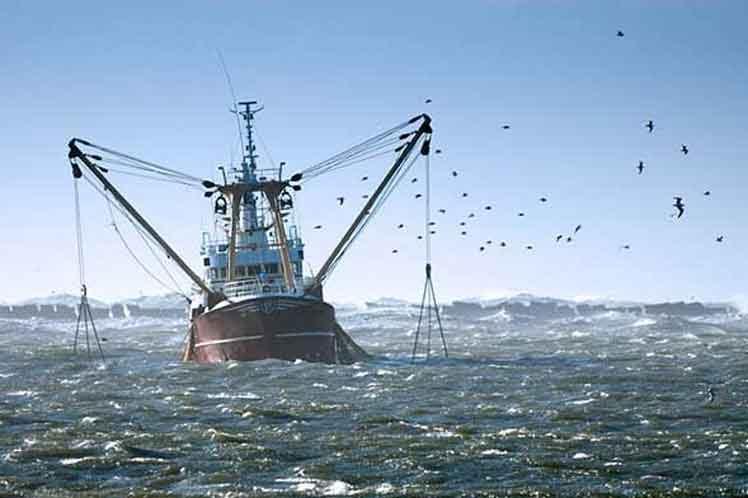 Sea Shepherd concluye su operación en contra de la pesca ilegal en África Occidental