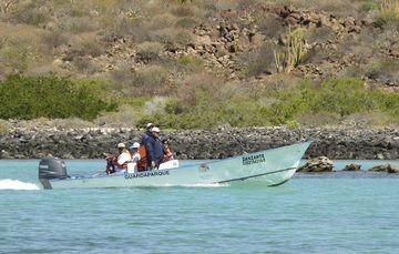 México: En el Día Internacional del Guardabosque se festeja al profesional en proteger la naturaleza