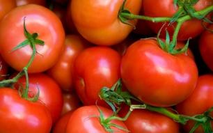 Utilizan la piel del tomate para crear plásticos biodegradables