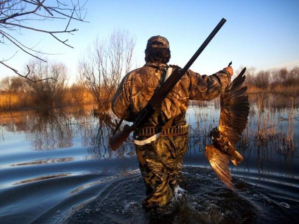 SEO/BirdLife prepara su posición sobre la caza