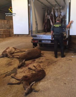 Intervenidos en una finca de Alájar (Huelva) 15 ciervos cazados ilegalmente
