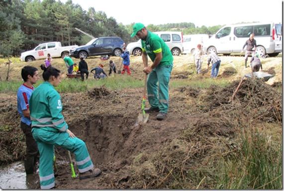Anfibios contra plagas: Las microrreservas llegan a Cantabria