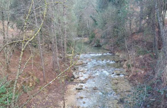 Una nueva herramienta detecta la presencia de pesticidas en los ríos