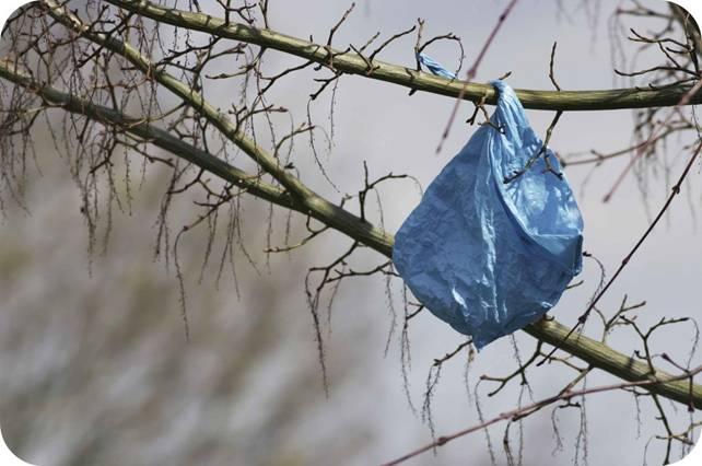 Bolsas de plástico, la 'plaga' que podríamos evitar