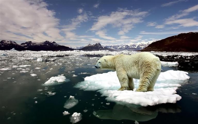 La energía eólica puede salvar el hielo marino del Ártico