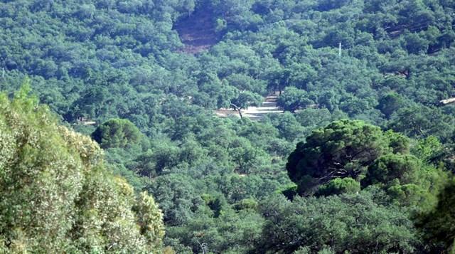 La Sierra Norte celebra su VI Semana de los Geoparques Europeos con más de 50 actividades
