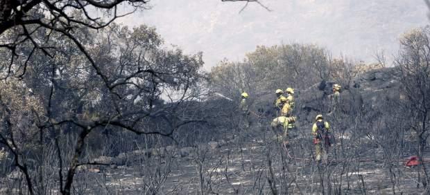 La Junta rebaja a nivel 0 el fuego de Fermoselle (Zamora) que ha afectado a casi 2.000 hectáreas