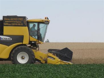 Generar energía con restos de biomasa vegetal