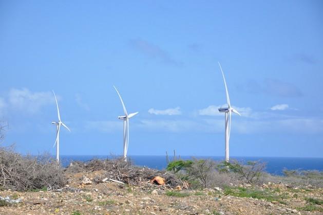 Caribe verde