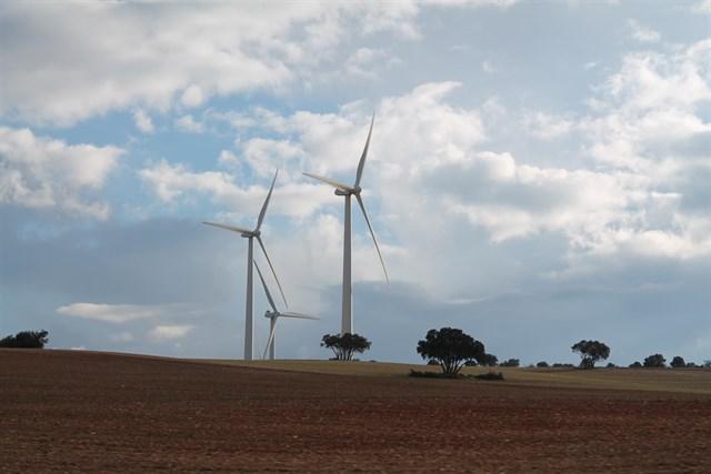 El Consejo de Ministros aprueba este viernes la nueva subasta de energías renovables por 3.000 MW