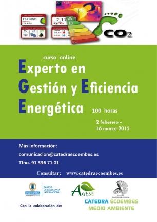 Con este curso no solo aprenderás en la gestión y la eficiencia energética, sino que serás un experto