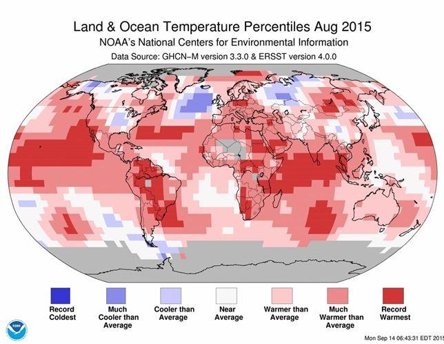 Agosto de 2015 el más cálido de la historia