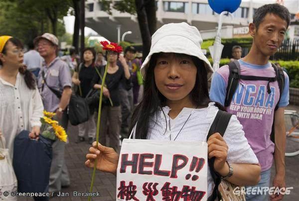 Japón debería descartar las nucleares mediante el desarrollo de energías renovables