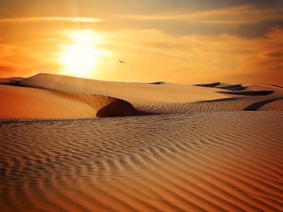 Energía solar del Sahara: revive el plan tunecino de proveer a Europa