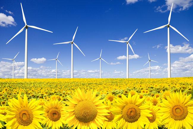 El Gobierno desestima el requerimiento de Cataluña contra el decreto sobre energías renovables