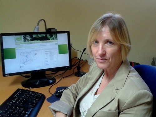UCAV crea una web para consultar especies forestales españolas