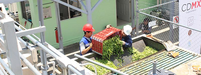 Primera planta de valorización de residuos orgánicos en la CDMX