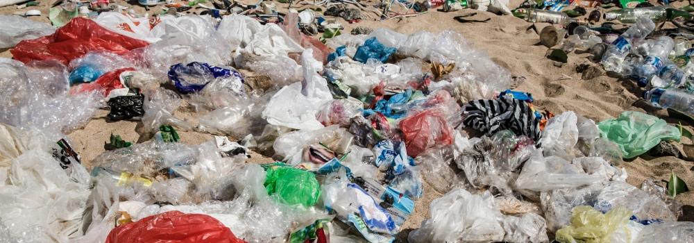 ONU Medio Ambiente y Think Beyond Plastic premian a las mejores ideas innovadoras destinadas a combatir la basura marina