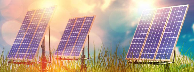 Red Temática de Bioenergía